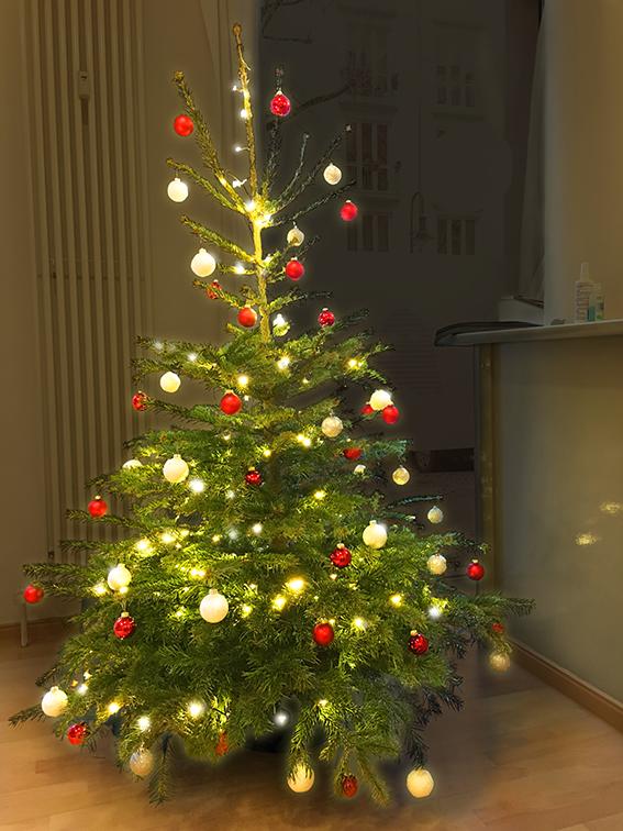 IMG_0417_Weihnachtsbaum